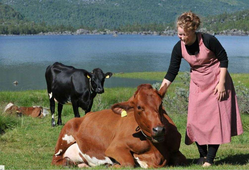 stay on a farm in norway