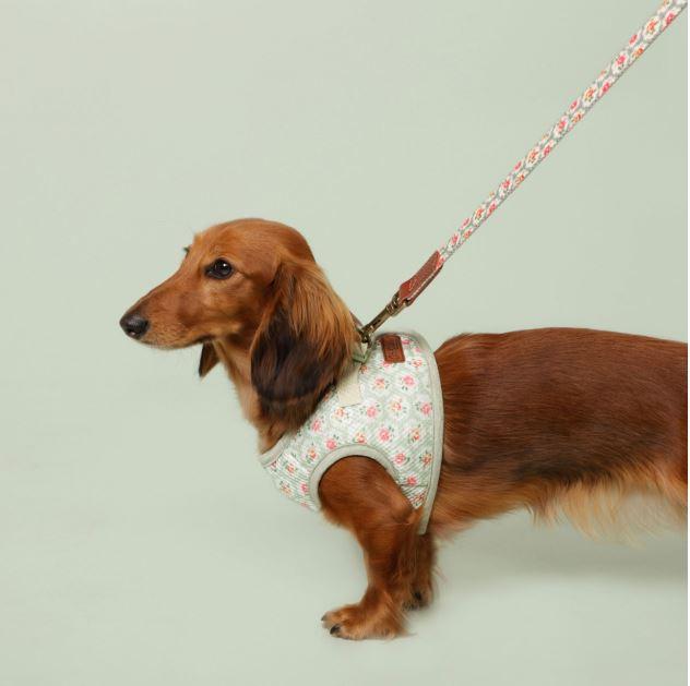 cath kidston dog harness
